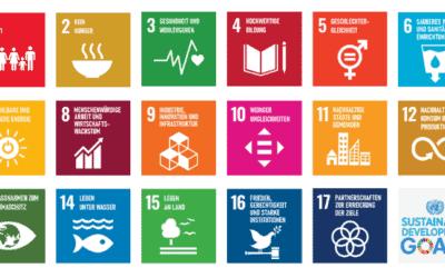 Die 17 Sustainable Development Goals der UN
