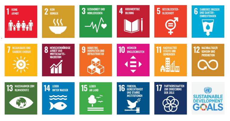 Die 17 Sustainable Development Goals derUN